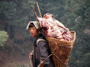 Uno sherpa